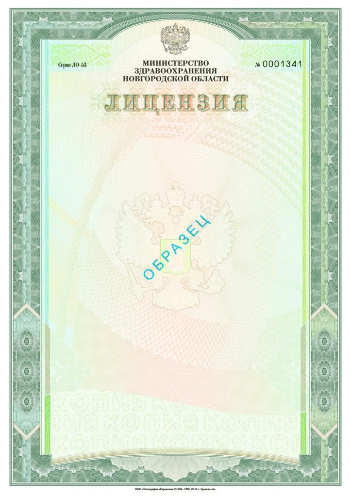 Лицензия (лицевая сторона)